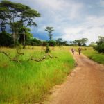 4 Reasons to Go Cycling in East Africa Right Now